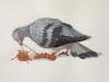 "Brian Adam Douglas, ""Tastes Like Chicken"" 2012, cut paper on paper"